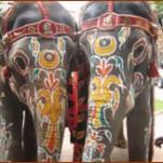 Развитие международных деловых и культурных контактов Индии